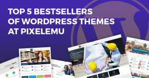 Top 5 bestsellers of WordPress themes at Pixelemu in 2019. All of them are WCAG and ADA compliant.