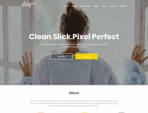 Illdy – Free One Page WordPress Business Theme