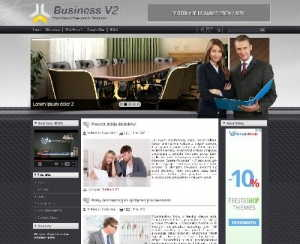 DD Business V2 44